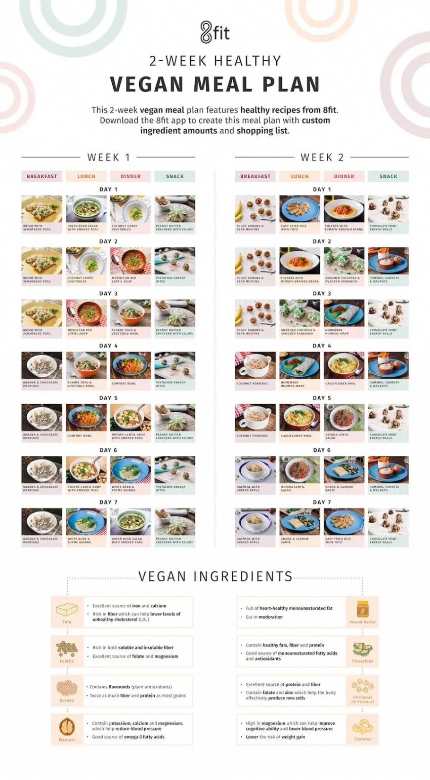 Pin on Protein Diet Plan For Weight Loss