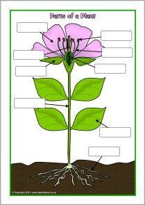 Gardening unit resources