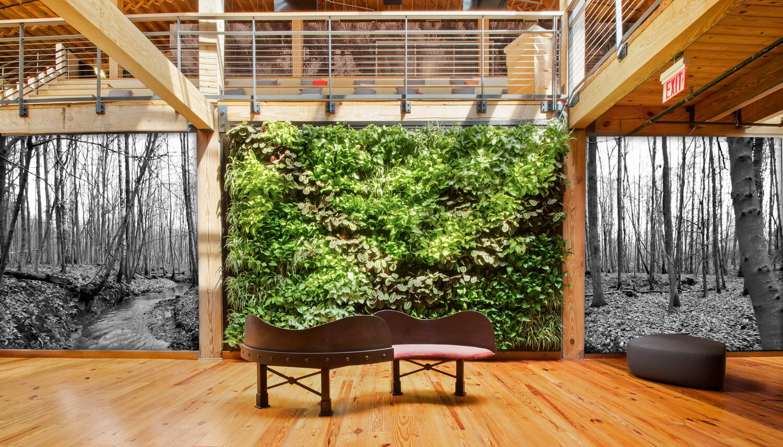 Indoor Green Wall By Suite Plants Durham North Carolina Verticale Tuin Tuin Ideeen Planten