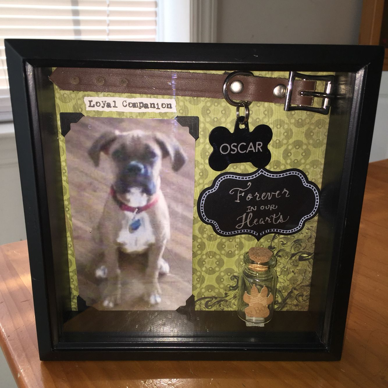 pet memorial shadow box collar customization available dog memory shadow box
