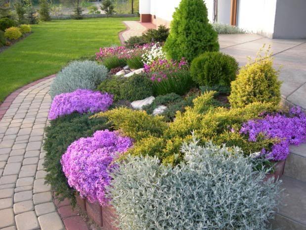 Forum Murator Garden Layout Vegetable Front Yard Landscaping Design Outdoor Gardens