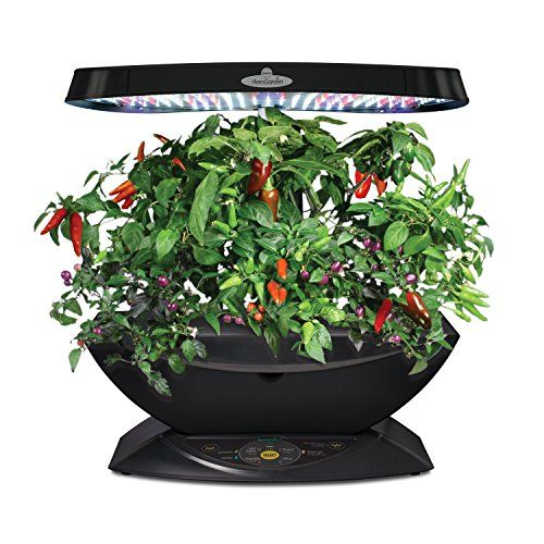 Grow Beautiful Herbs Spices With This Indoor Aeroponic 640 x 480