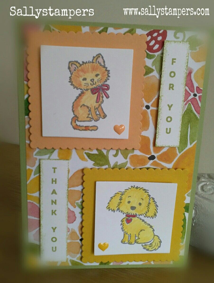 Bella meets Pretty Kitty. Fruit Stand and Vertical Greetings. Independent Stampin' Up!® Demonstrator UK.