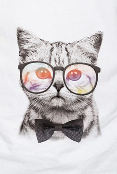 53e2f830d Quadrinhos De Gato, Imagens Para Emoldurar, Gato Com Oculos, Imagens Para