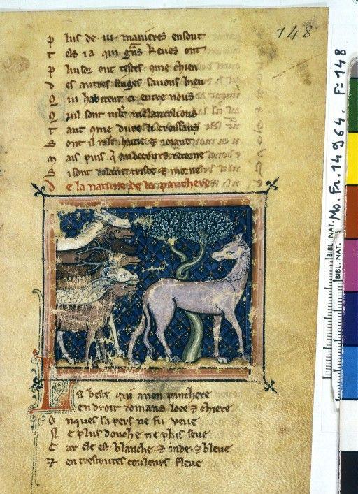 Guillaume le Clerc le bestiaire divin