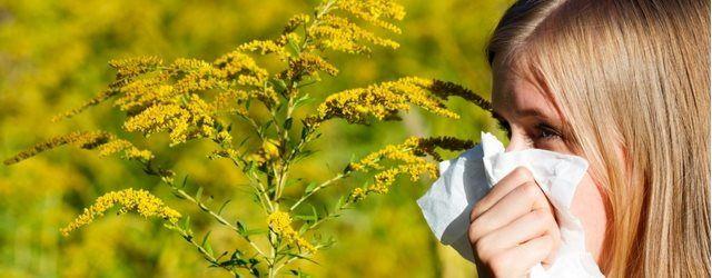 Votre région sera-t-elle touchée par le pollen ? Découvrez le sur #Meteocity !