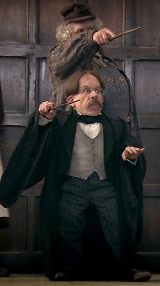 Pomona Sprout And Filius Flitwick Brave Defenders Of Hogwarts Harry James Potter Flitwick Harry Potter Films