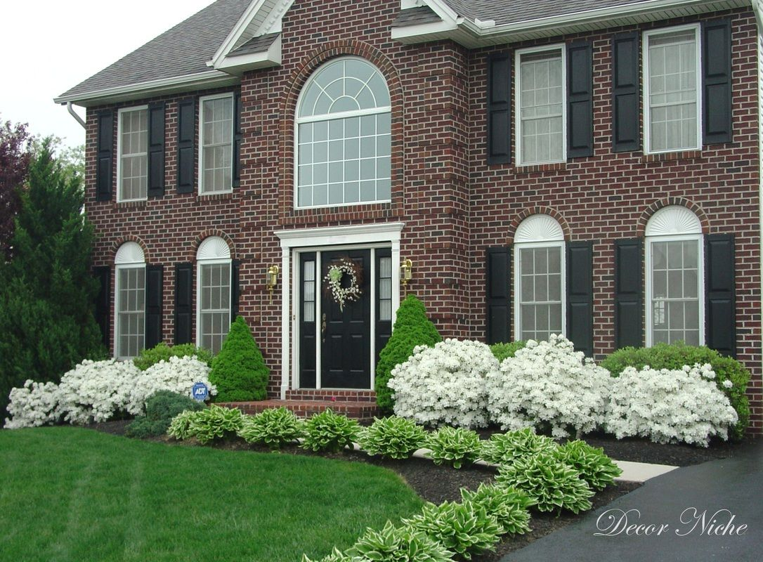Bushes for front of house landscape design pinterest for Front window landscaping ideas