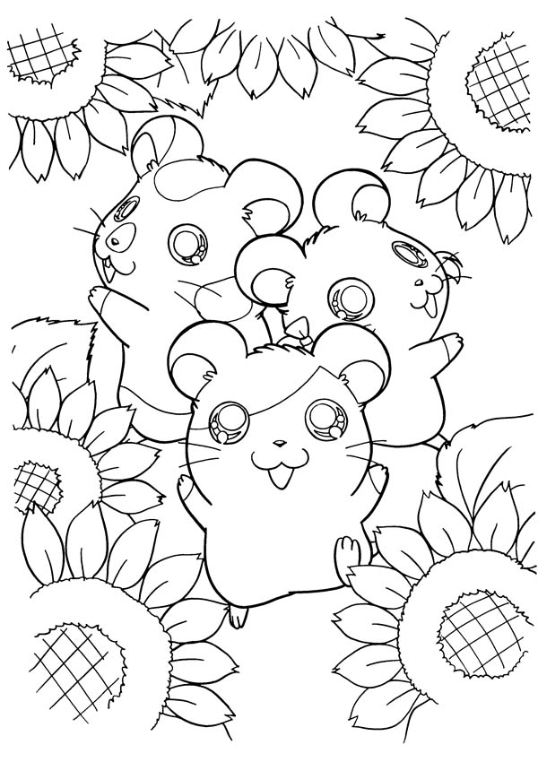 Hamtaro And Friends At Sunflower Garden Coloring Pages  Bulk Colorbulk bulk