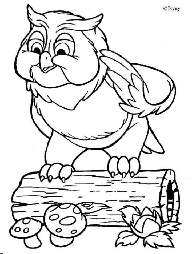 Friend Owl Owl Coloring Pages Horse Coloring Pages Disney Coloring Pages