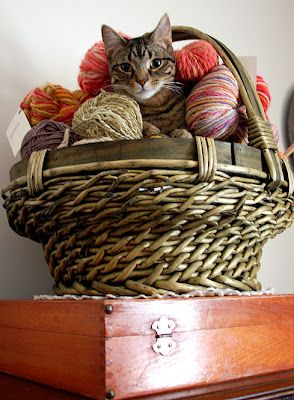I thought we were knitting today.