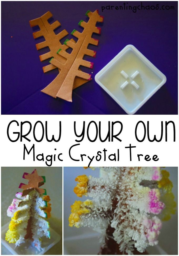 Create a magic tree out of salt crystals, cardboard, and a few other household items. Within a day, you'll have a colorful crystal covered tree that seemed to magically sprout from nothing!