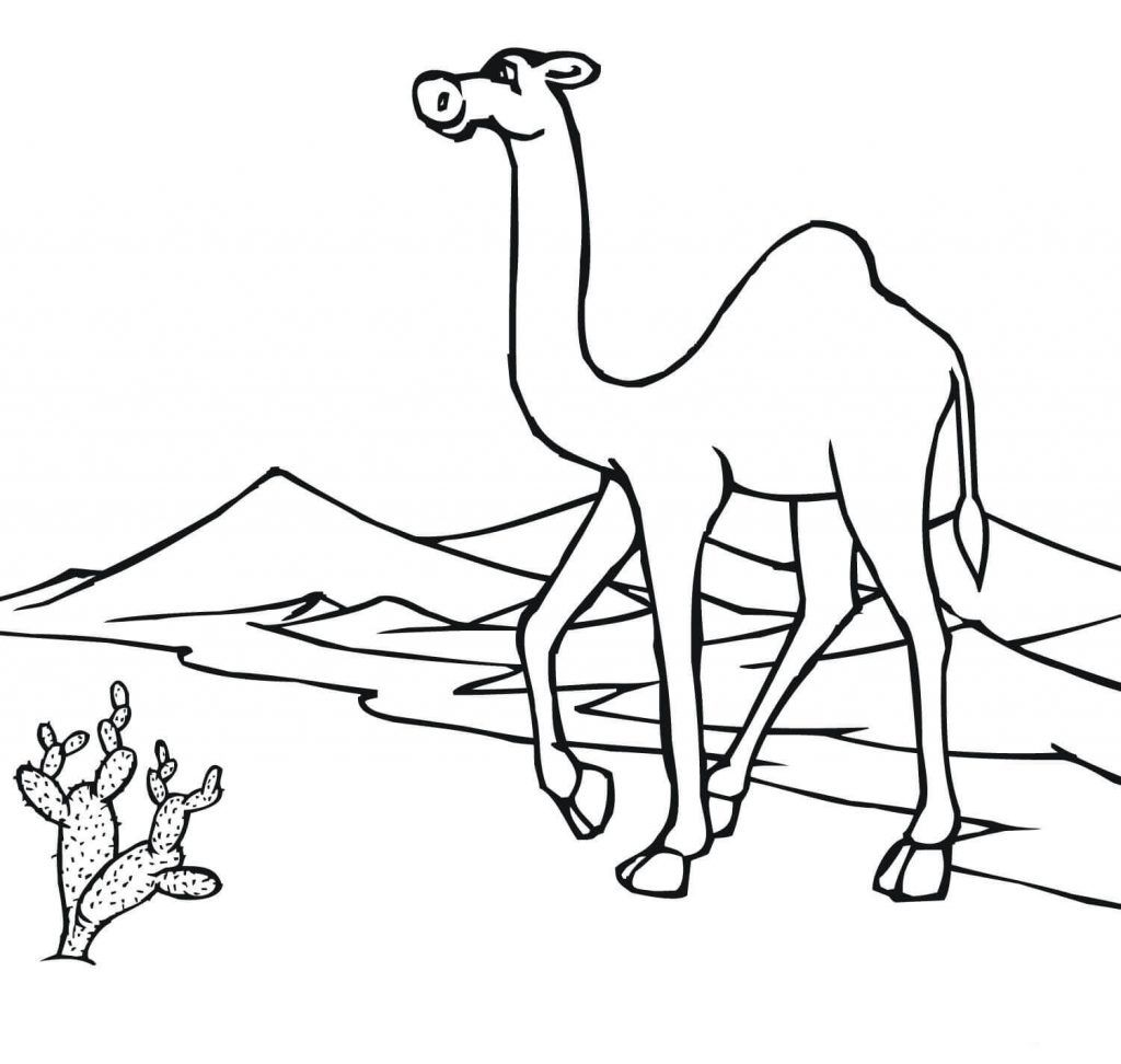 Desert Coloring Pages Best Coloring Pages For Kids Coloring Pages Turtle Coloring Pages Free Printable Coloring Pages [ jpg ]