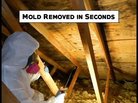 Rmr Solutions Llc Mold Removal In 15 Seconds 86 Is The Fastest Remover