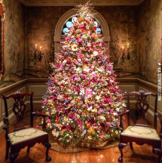 A Christmas Tree Made Only Of Dried Flowers Arboles