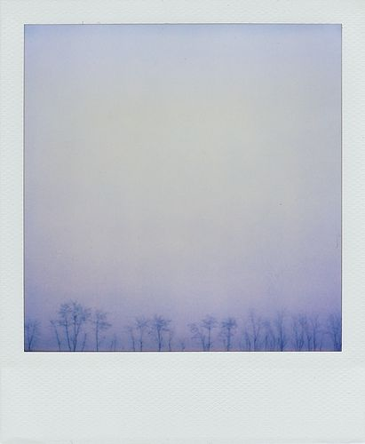 blue, trees