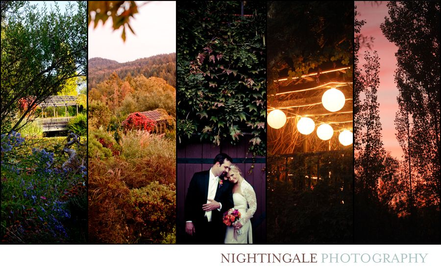 Nov 23 Napa Valley Wedding Photographer Wine country