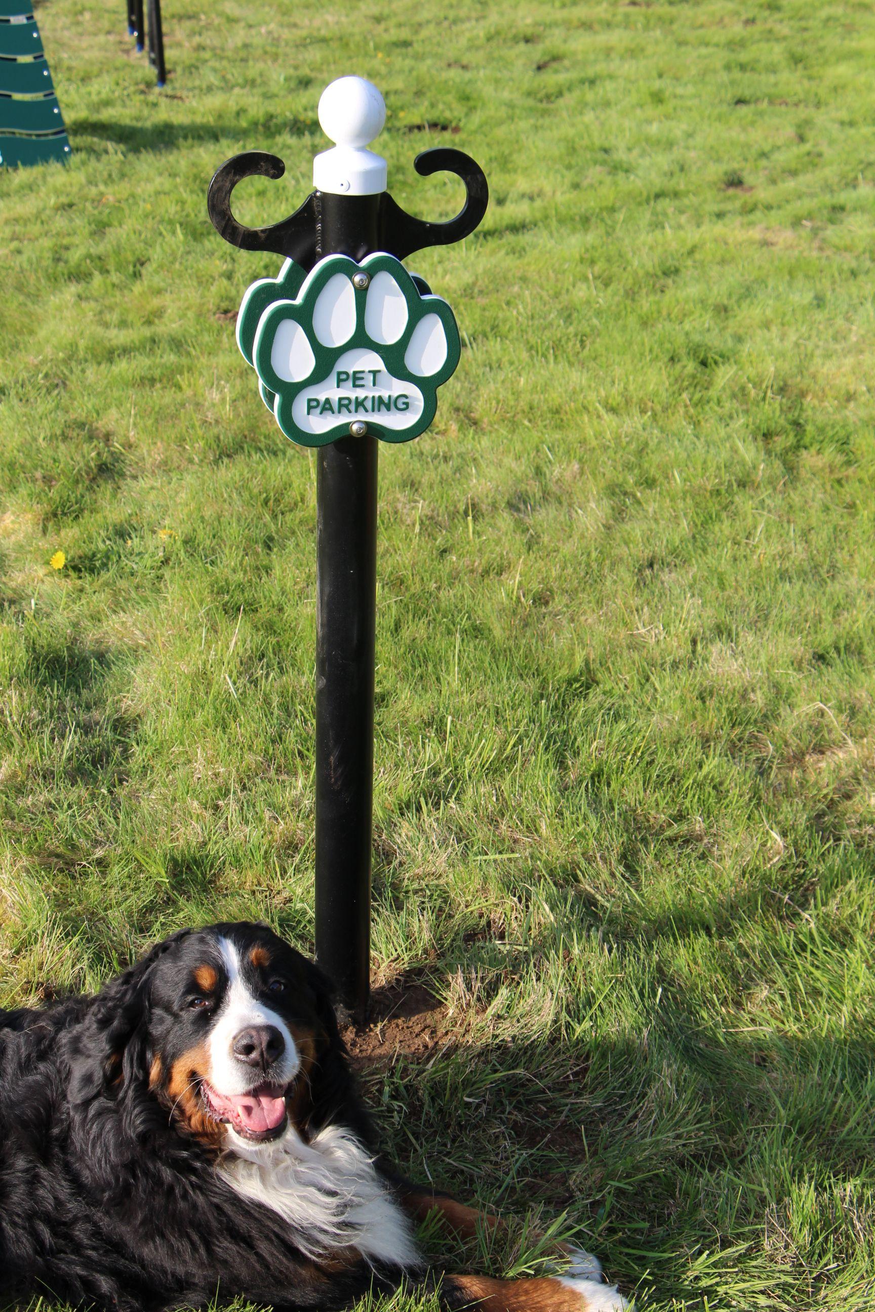 Poodle Parking Post Dog Park Pets Dogs