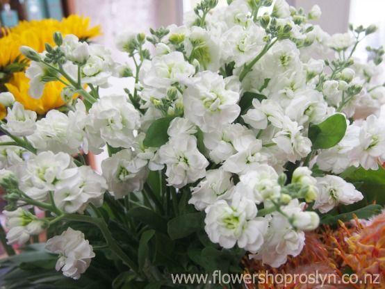 We love the cottage look with flowers! www.flowershoproslyn.co.nz