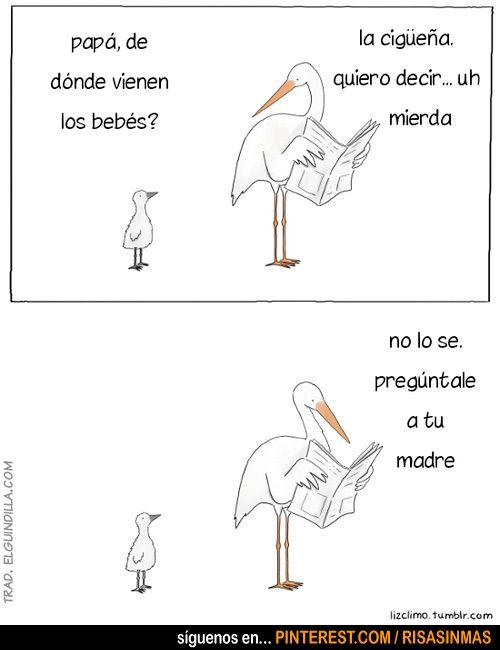 Papa De Donde Vienen Los Bebes Funny Animal Comics Funny Comics Cute Comics