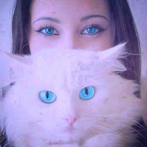 اجمل عيون البنات صور عيون رمزيات عيون Cool Eyes Beautiful Eyes Turquoise Eyes
