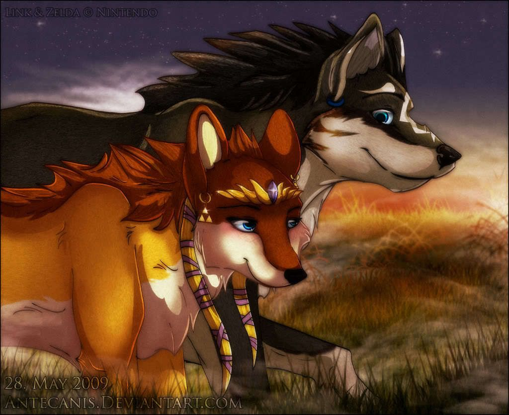 wolf link and wolf zelda thelegendofzelda photo my