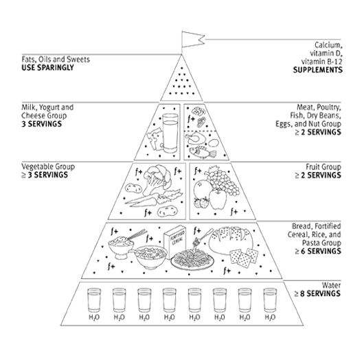 Food pyramid worksheets for adults