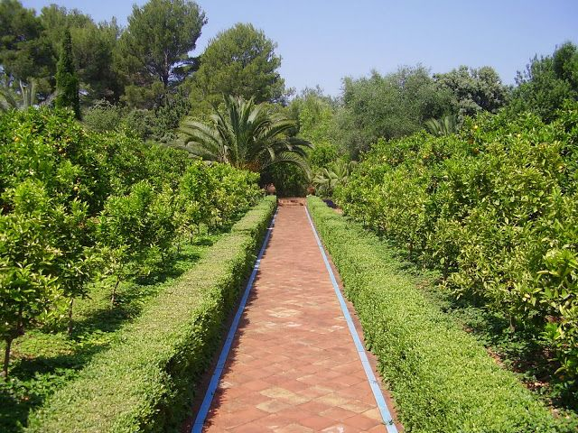 jardin mediterraneo - Buscar con Google