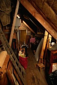Is It Safe To Set Off Bug Bombs In An Attic