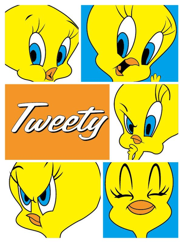 tweety   These are the latest Tweety pictures added to the