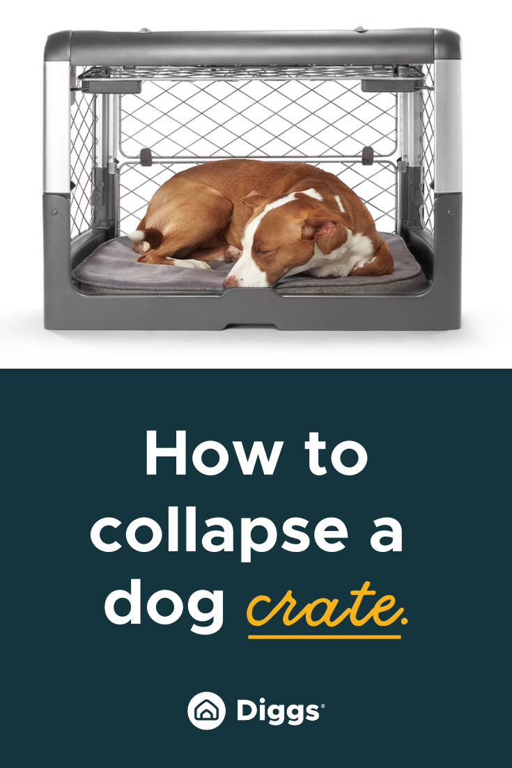 How To Collapse A Dog Crate The Revol Crate Is Easy To Use Dog Crate Crates Folding Dog Crate
