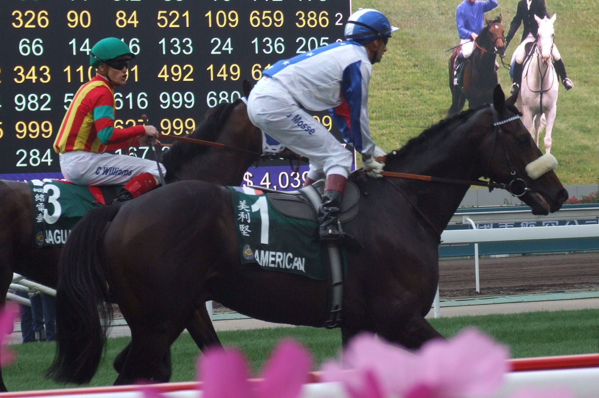 2010 American (horse) List of Melbourne Cup winners