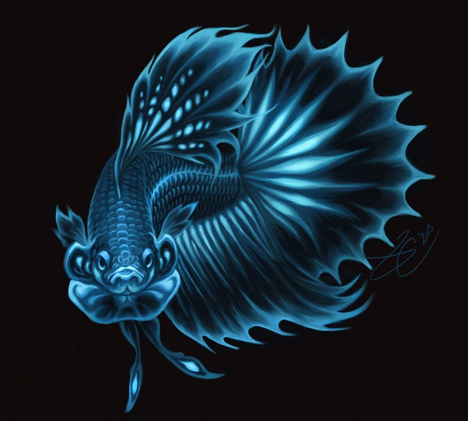 Bioluminescent Betta Betta Betta Fish Animal Paintings Acrylic