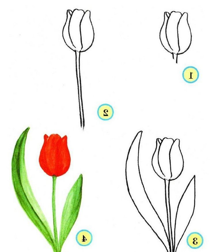 13 Luxe De Dessin Facile Fleur Photos Fleur Dessin Facile Dessins Faciles Dessin De Fleur