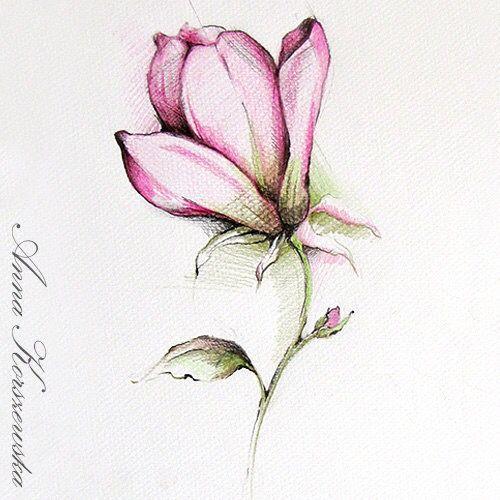 Pin van Janny Lobbezoo op ~ Magnolia Pink ~ - Drawings ...