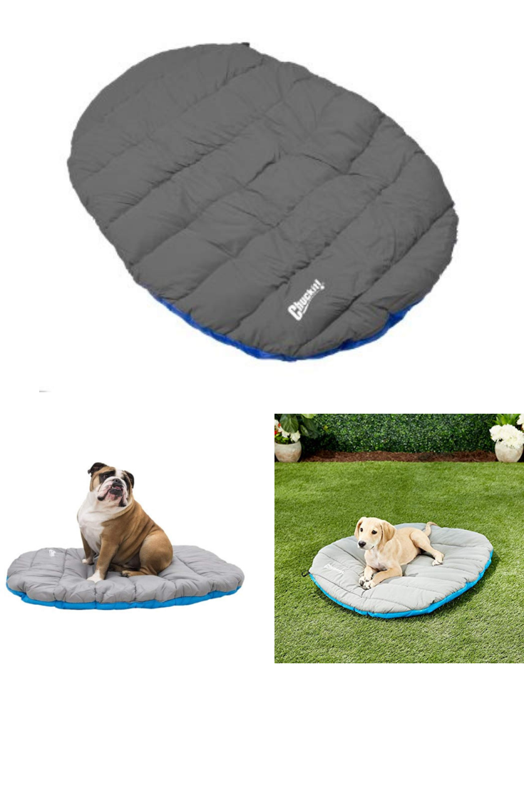 Chuckit Travel Dog Bed Dog Beds Amazon Extra Large Dog Beds Cute Dog Beds Waterproof Dog Crate Mats Dog Rubber Mats Dog Dog Bed Mat Pet Beds Go Blue