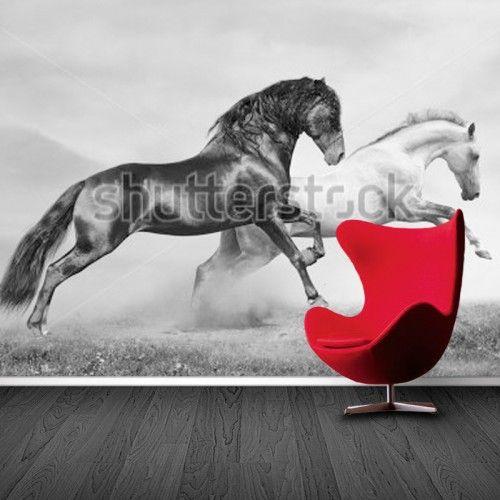 Fotobehang vanaf 17 95 per m2 ruime collectie of eigen for Kostprijs behangen per m2