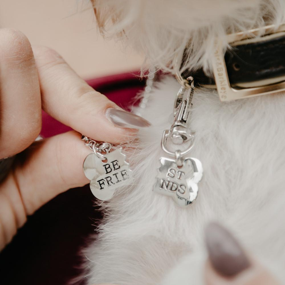 Best Friend Necklace & Tag for You & Your Dog! #inspireuplift explore Pinterest