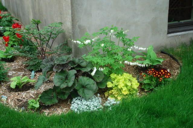 plate bande de fleurs vivaces recherche google am nagement paysager pinterest bande de. Black Bedroom Furniture Sets. Home Design Ideas