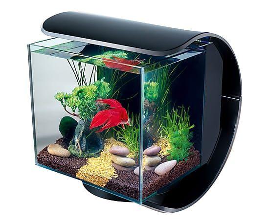 Acquario per allevamento pesci rossi silhouette led nero for Acquario per pesci