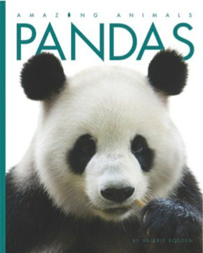 Amazing Facts About the Giant Panda