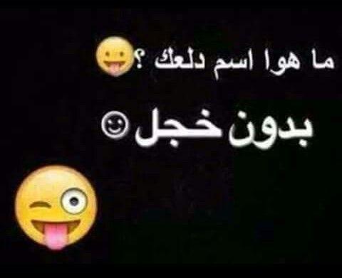 فطوم فطوومي فطامي Funny Arabic Quotes Funny Quotes Arabic Jokes