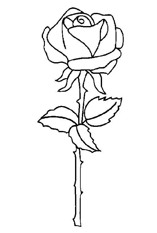 Dibujos para Colorear Naturaleza 75 | Dibujos para colorear para ...