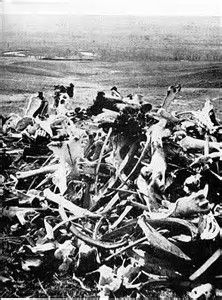 Image result for Custer's Last Stand Mutilated Bodies
