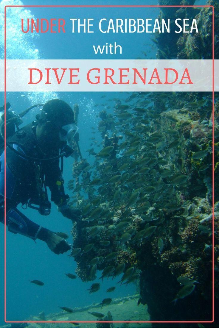 Under The Caribbean Sea With Dive Grenada #scubadivingtrip