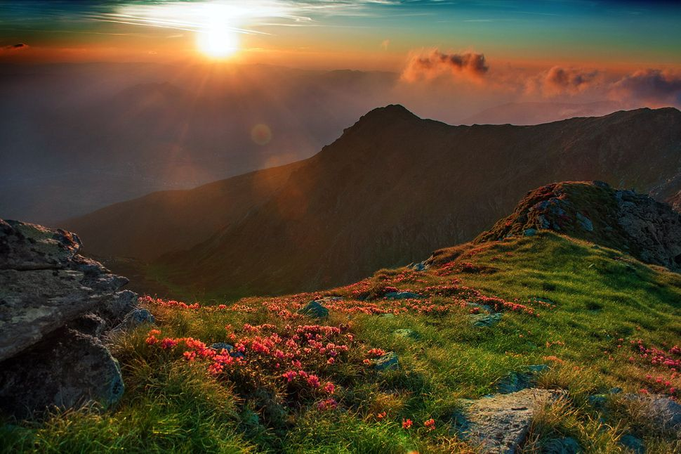 Incredible Photographs Of A Transylvanian Sunrise Hiking - This man hikes up the transylvanian mountains every morning to photograph sunrise
