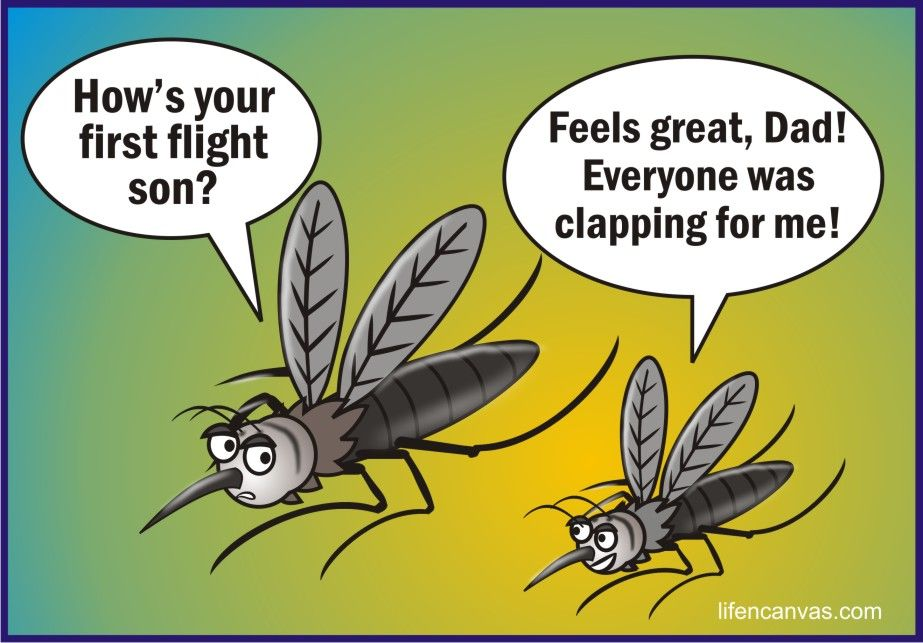 Image result for mosquito bite comic