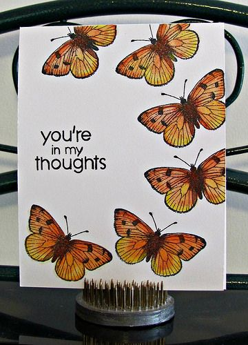 Sue Givens your in my thoughts butterflies | Flickr - Photo Sharing!
