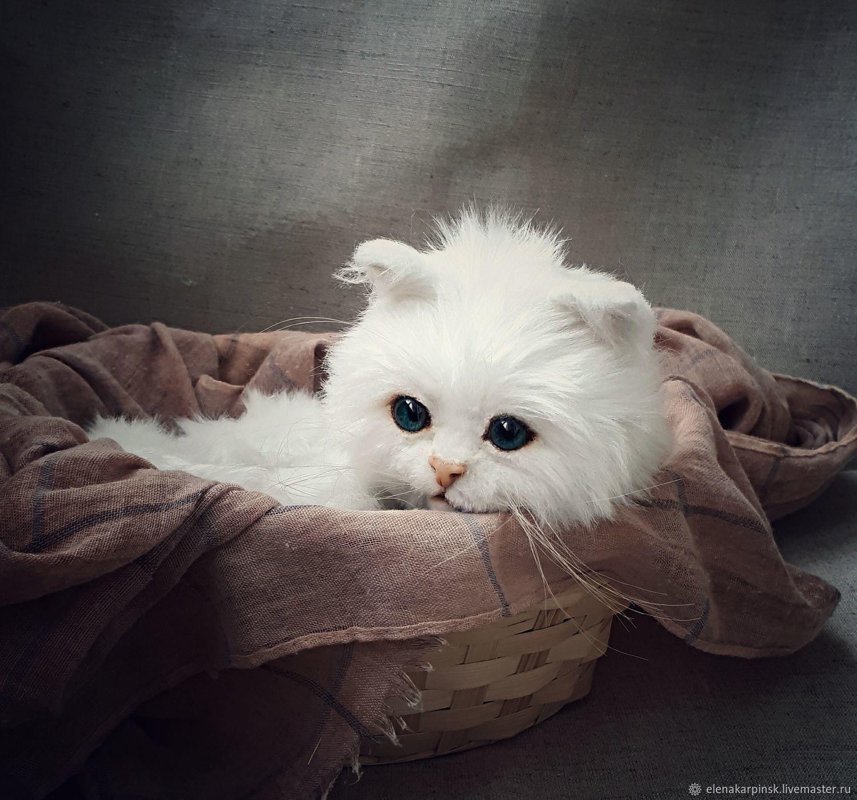 Teddy Animals white kitten заказать на Ярмарке Мастеров