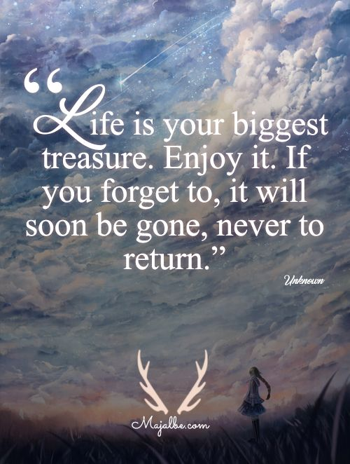 Life Is Your Biggest Treasure Enjoy It If You To It